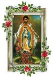 Santisima Virgen de Guadalupe