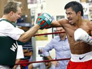 Pacquiao vs Cotto News and Updates