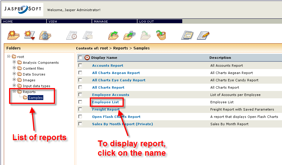 Jasper Server Reports List of reports