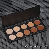 Coastal Scents Concealer Palette