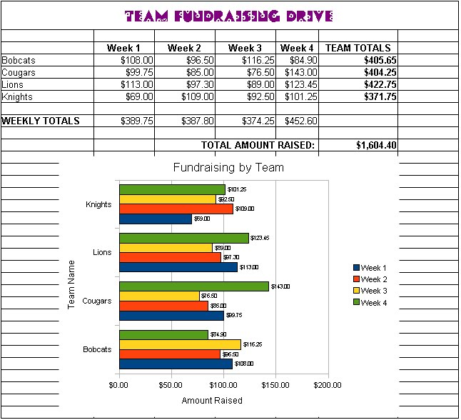introduction to computer applications team fundraising spreadsheet