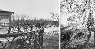 Lee Friedlander Photographs Frederick Law Olmsted Landscapes