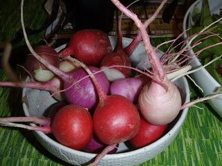 Bowl of mixed radishes