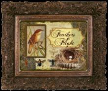 Feathers & Flight