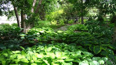 Yates Garden Design