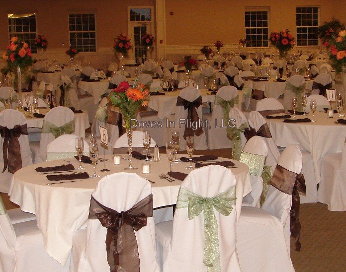 Eagle Eye Chair Covers Sashes