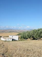 La maison d'Ouled Emgatel