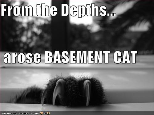 [basement-cat-depths.jpg]