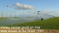 center pivot on rice Brazil