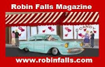 Robin Falls Magazine 2010