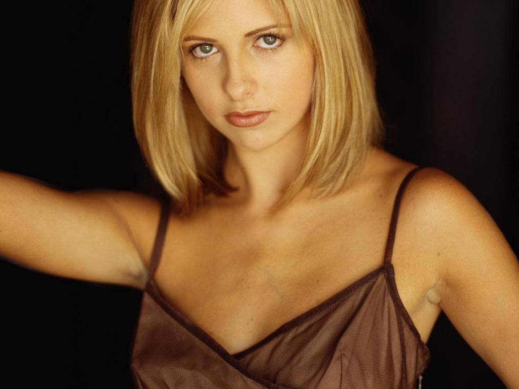 http://1.bp.blogspot.com/_ZN069oJAKVc/TL8O1rWqocI/AAAAAAAAALU/INF6FoDp7LY/s1600/Sarah-Michelle-Gellar-102.jpg