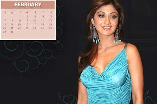 New Year Calendar 2011 - February