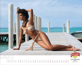 Kingfisher Calendar 2011 - October