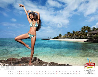 Kingfisher Calendar 2011 - February