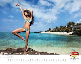 Kingfisher Calendar 2011 - February
