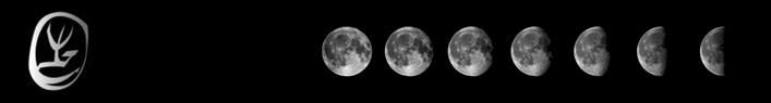 nettuno moon