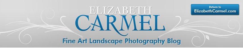 Elizabeth Carmel