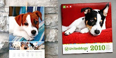 Uniteddogs helps you communicate with other dog-owners from around the world