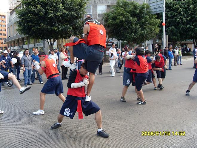 Festejo de las Artes Marciales de Asia.