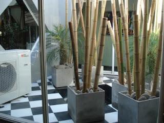 Deco mediterraneo de vanguardia enero 2010 - Macetas con bambu decoracion ...