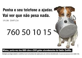 Iniciativa União Zoofila- Participa.