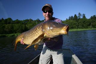 dce76700ea Maine Carp Fishing