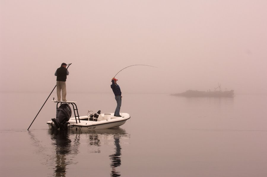 Maine striper fishing reports february 2011 for Nh fishing license cost