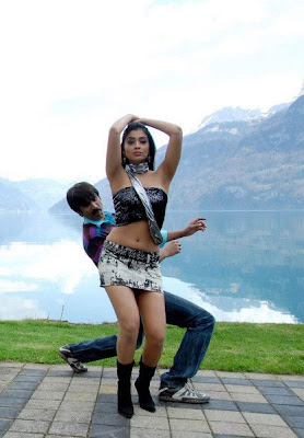 Shreya Saran Hot Photos in Movie Don Seenu 04