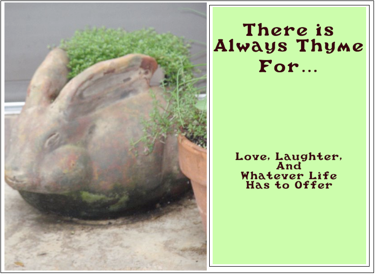 There is Always Thyme for......