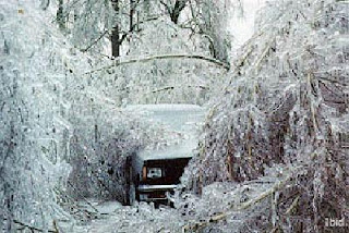 ice storm