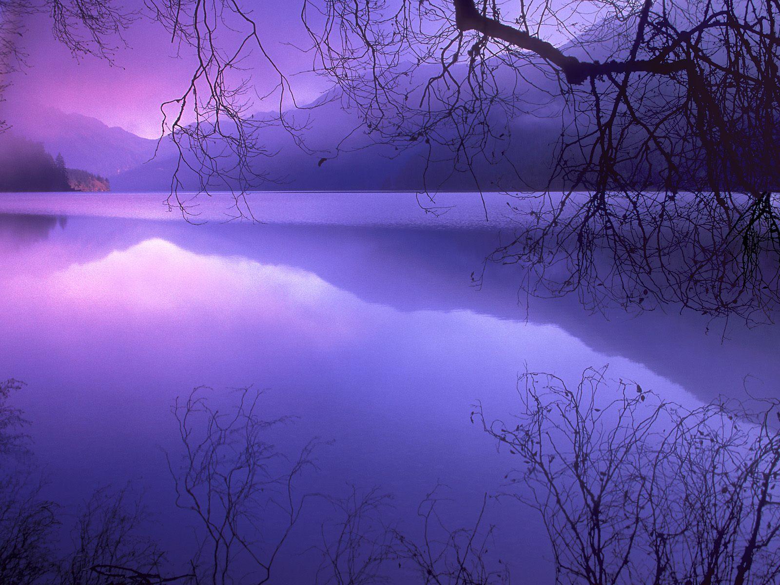 http://1.bp.blogspot.com/_ZU9DzPvmpYI/SrpcMgfCn3I/AAAAAAAAABs/DiM99gken4A/s1600/purple_haze_over_lake_crescent__olympic_national_park__washington.jpg