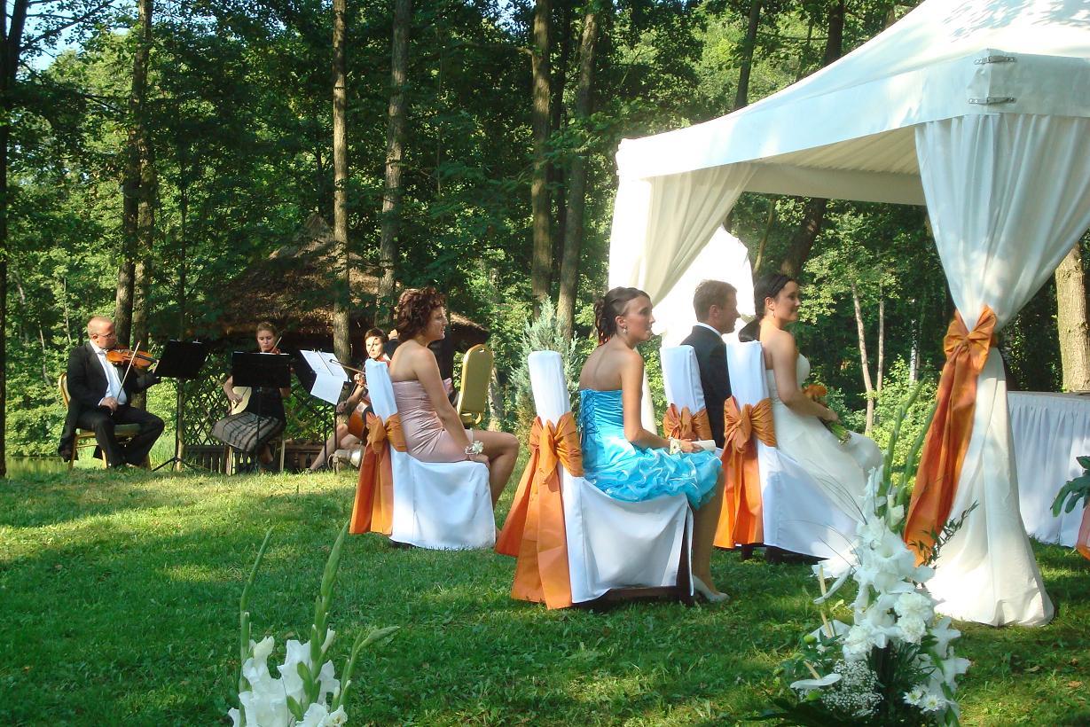 Kwartet Smyczkowy Prestige ślub W Plenerze