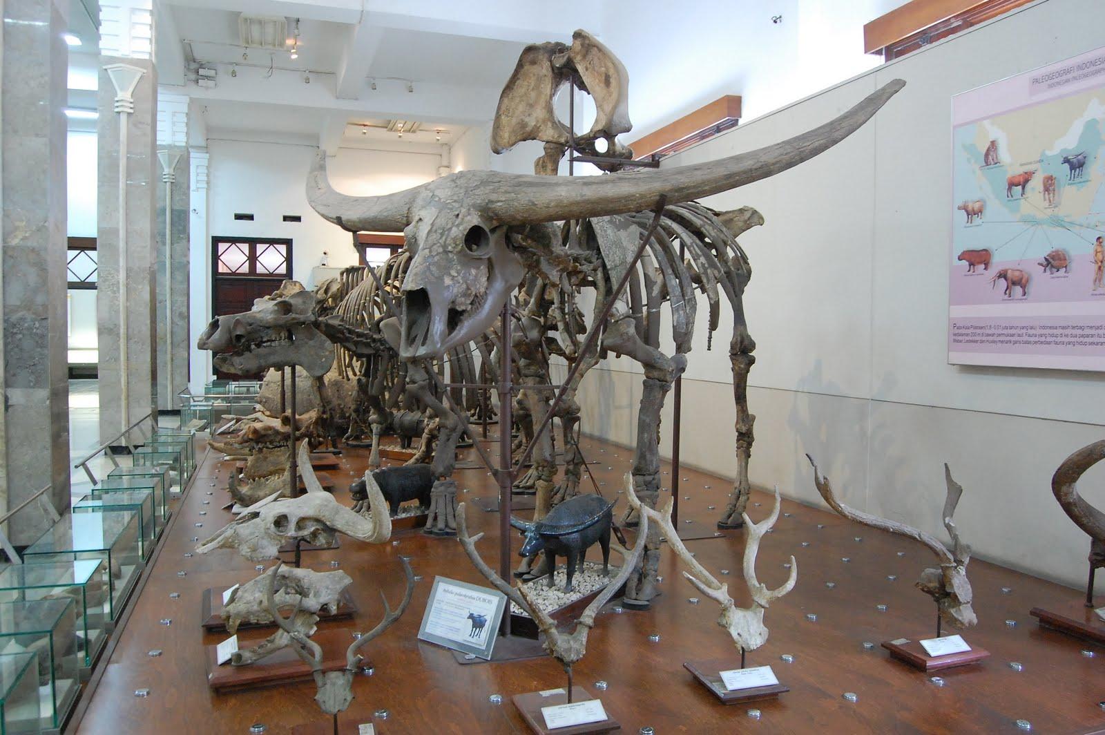 Saujana: Buat museum lebih menarik yuk!