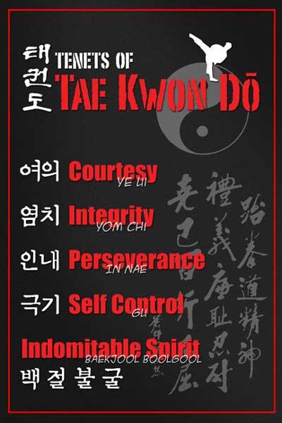 I PRINCIPI DEL TAEKWONDO
