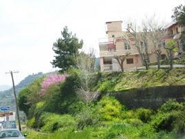Το Ροζέικο σπίτι σήμερα