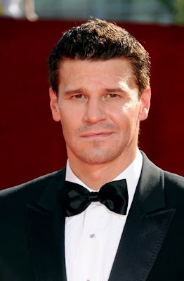 David+Boreanaz ... Free FLV Converter is a great way to convert video files from Flash ...