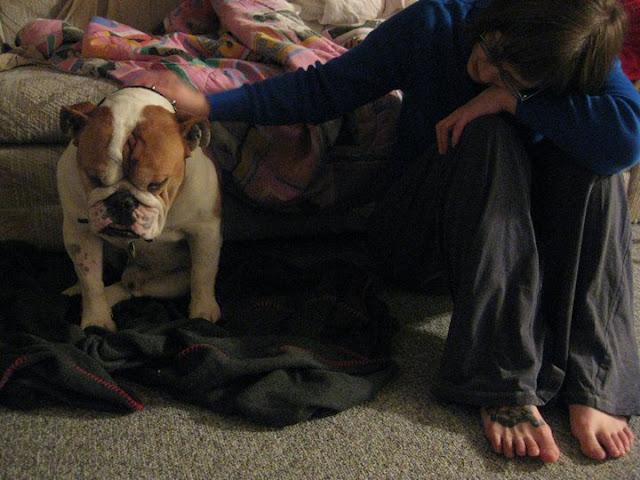 Dog Getting Wobbly On Legs