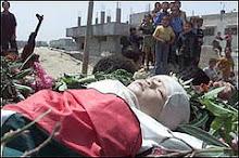 Palestine baby died.