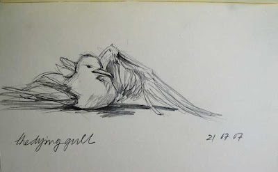 gull dying graphite on paper moleskine