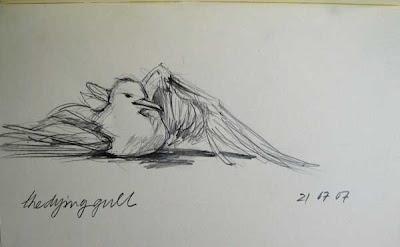 gull dying graphite on paper moleskine