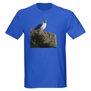 tshirt 66 angry seagull Angry Seagull t shirt