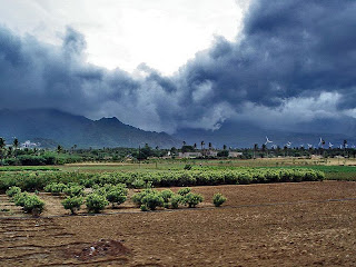 Nagercoil Climate | RM.