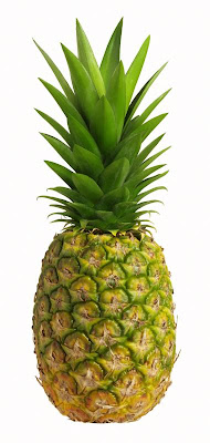 Swingers pineapple The Pineapple Significance – The Diary of Boots