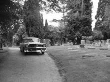 My 1956 Chevrolet
