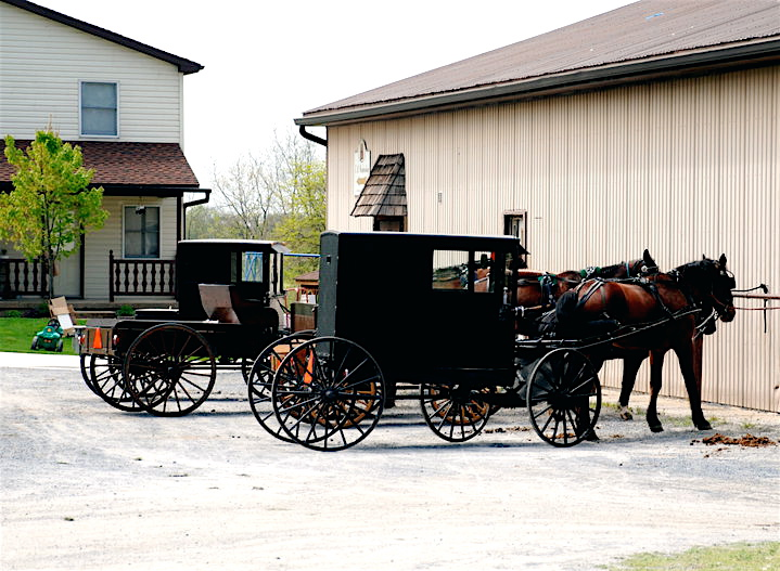 online dating for amish Timelapse footage shows an amish community in ohio, us construct a barn in privacy and cookiesjobsdatingoffersshoppuzzlesinvestor the event occured in may this year but footage has only recently surfaced online.