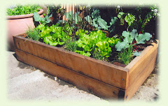Abandon your terrible soil!  Raised Beds are the key.