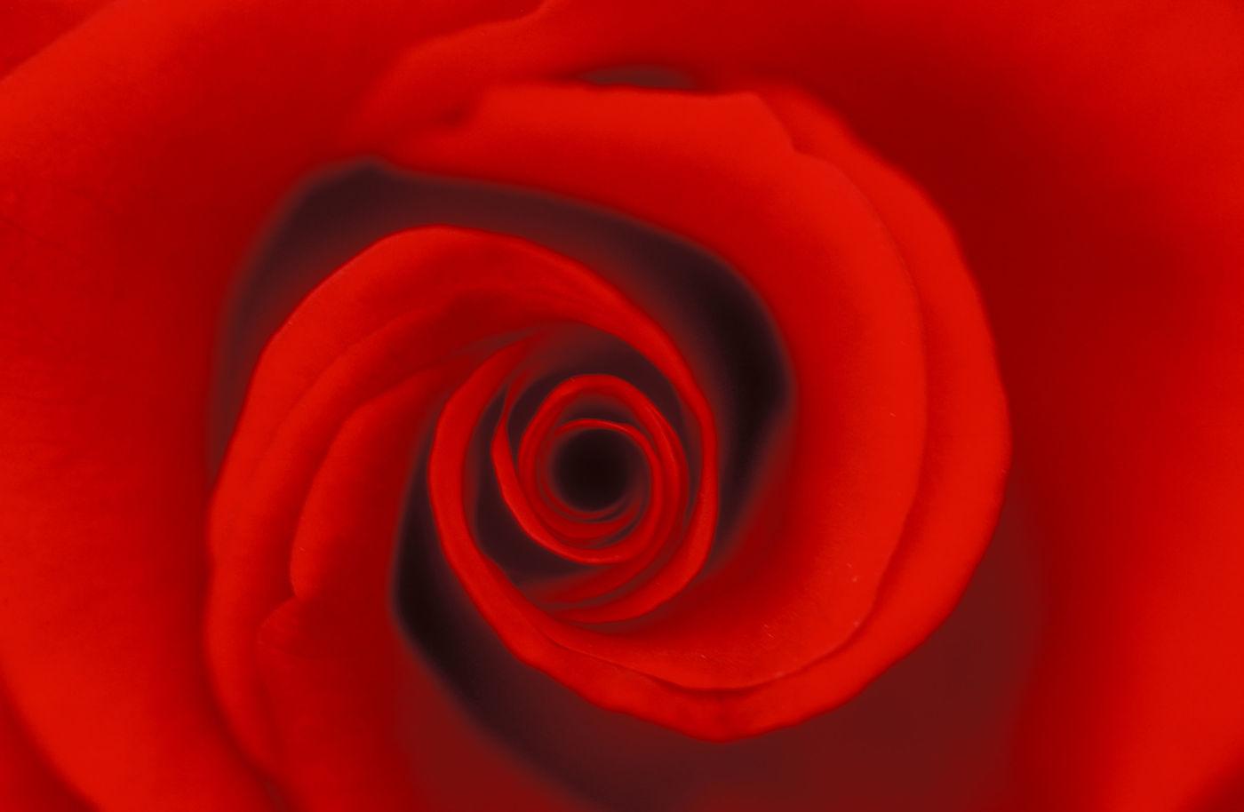 fibonacci spiral how to draw