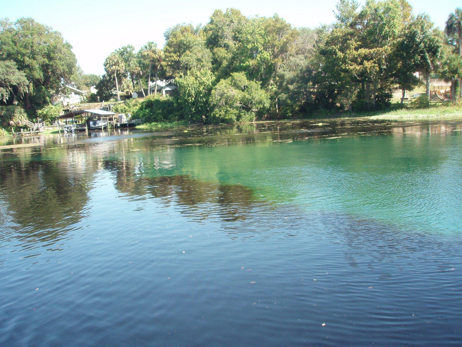 Withlacoochee And Rainbow River Confluence McEntegarts RV Escapades - A long river