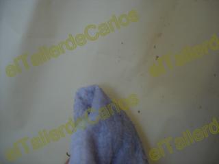 Eltallerdecarlos limpiar cortinas ba o eliminar moho de ba o for Limpiar mampara bano muy sucia