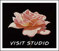Visit Online Studio: